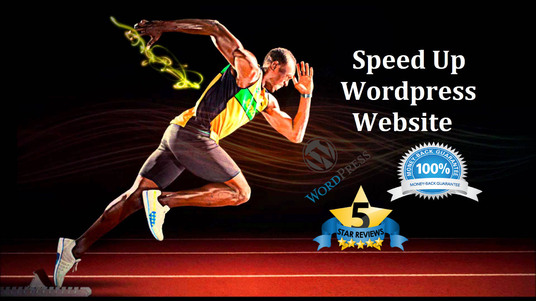 I will optimize WordPress site speed