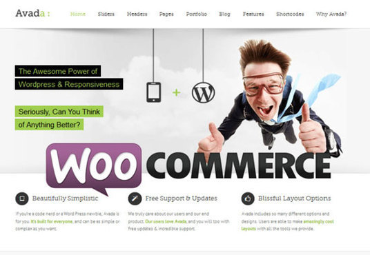 I will develop a complete WordPress eCommerce site