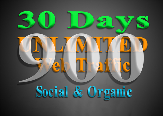 I will Deliver 900 organic & social WEB TRAFFIC