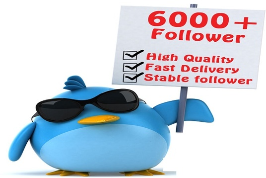 I will add you 6.000+ Twitter followers HQ  within 24 hours fast delivery