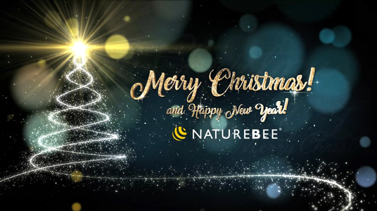 Create christmas and new year video greeting for 5 bozo fivesquid cccccc create christmas and new year video greeting m4hsunfo