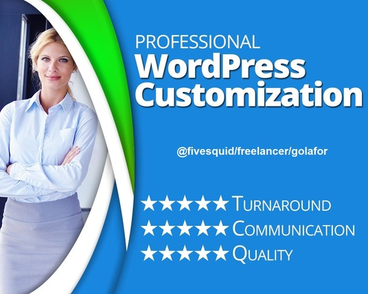 I will build your WordPress website or customize theme