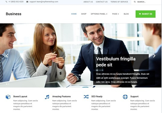 I will  build professional WordPress website for your business or blogs
