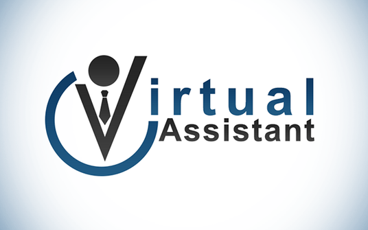 I will be your virtual assistant for 2 hours
