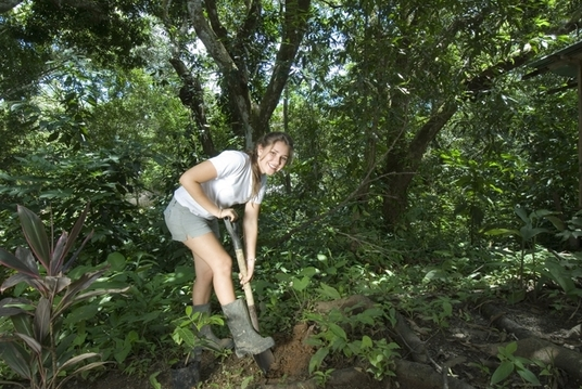 I will plant a tree in a natural rain forest Costa Rica
