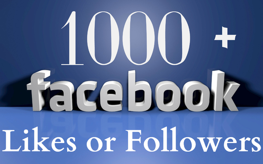 I will add 1000+ Facebook Fan Page Likes