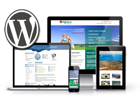 I will setup WordPress, install WordPress website, theme and customizaion