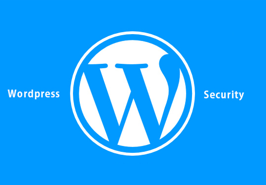 I will Secure your WordPress Website or blog