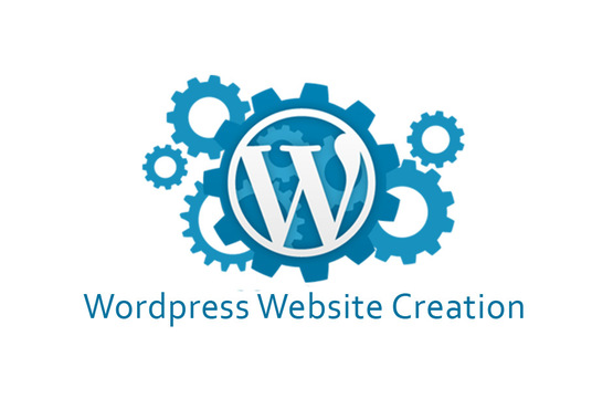 I will  create wordpress website for you