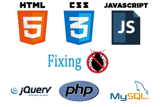 I will fix your php, MySQL, html, css, js bugs