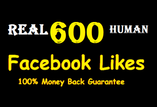 I will provide 600+ Real Facebook fan page likes (WorldWide) based