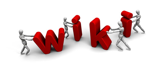I will Create 200 Contextual Wiki Links For Your Site