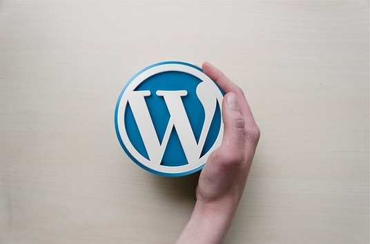 I will install WordPress and 1 theme on your domain