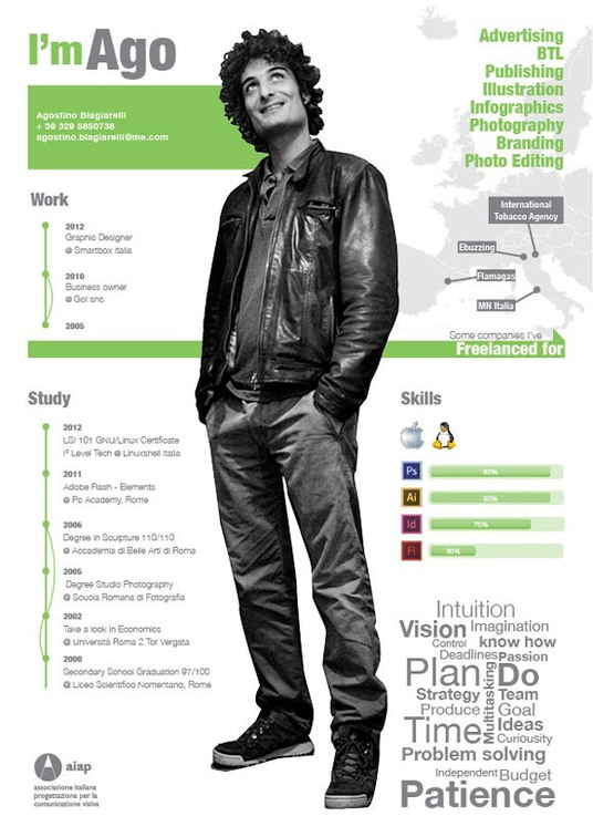 I will create a professional CV Resume in Infographic Style