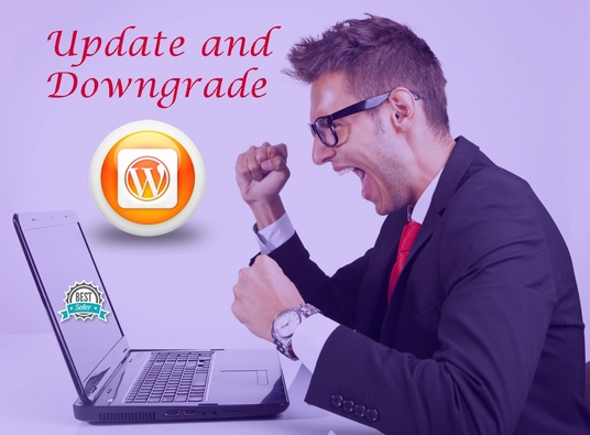 I will update or downgrade WordPress version for you