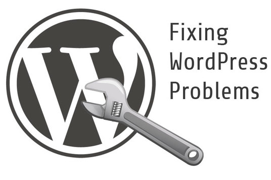 I will fix WordPress issues