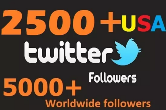 I will add 2500 real twitter or 1500 IG followers in 24hrs