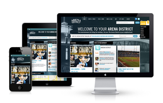I will build a responsive wordpress website for you