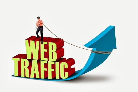I will UNLIMITED genuine real Website TRAFFIC for 6 months