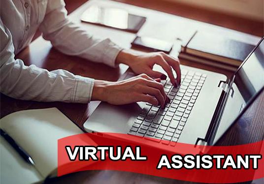 I will work as your VIRTUAL ASSISTANT