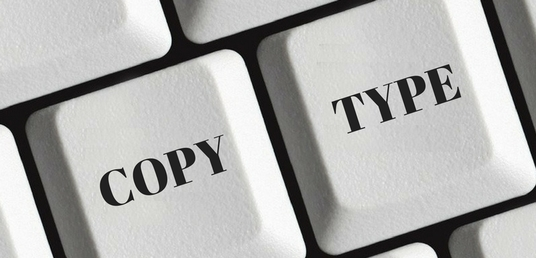 I will type your PDF or scanned documents up to 6 pages