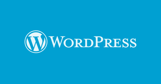 I will develop and fix issues in WordPress