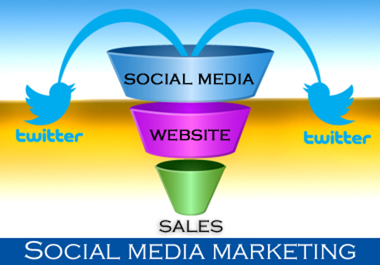 I will Drive quality traffic to your website with a Twitter Campaign