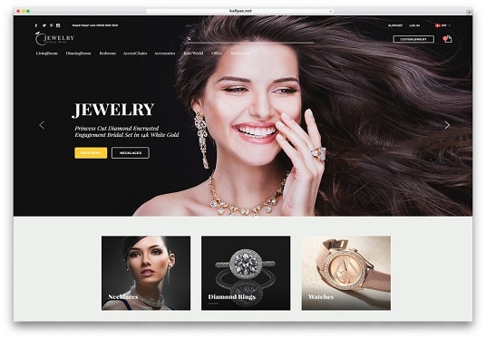 I will create a WordPress eCommerce website for your business