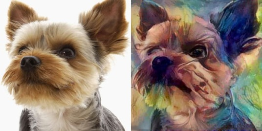 I will draw a beautiful oil portrait of your dog or cat