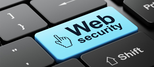 I will conduct security of your website