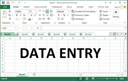 I will do data entry for 2 hours