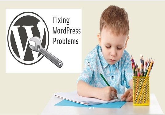 I will fix wordpress error and different issues