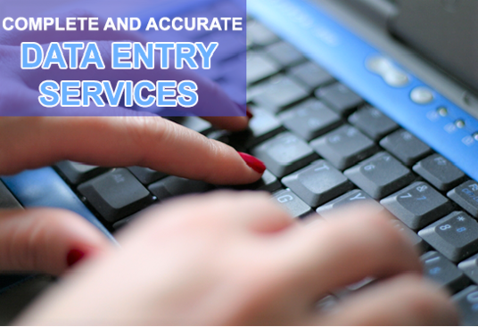 I will provide Data Entry Services