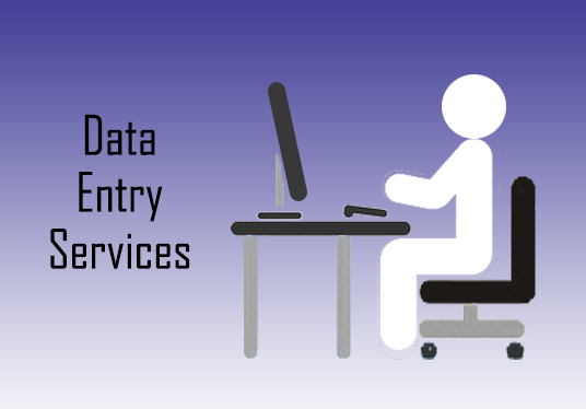 I will carry out Data entry Tasks