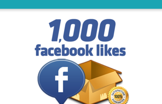 I will Provde 1000 REAL Facebook likes
