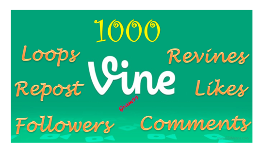 Start Instant 1000 Vine Followers, Likes, Revines,  3000 Loops, Repost, or 10 Comments