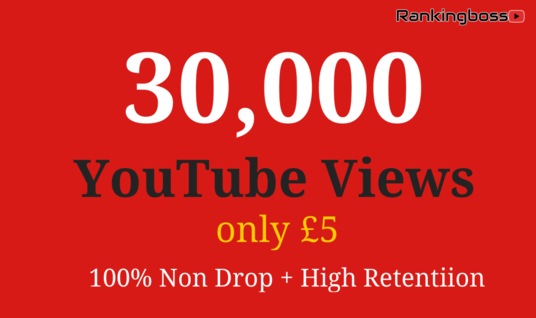 I will provide 30,000+ Real YouTube Views