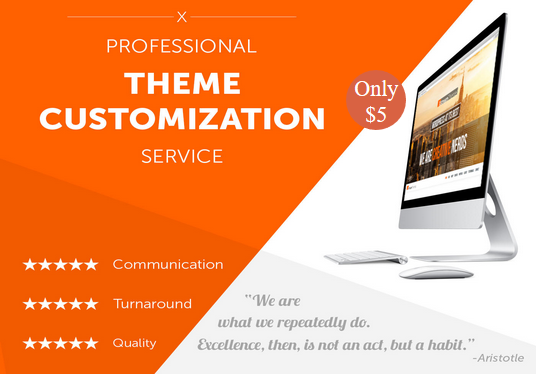 I will help you to install wordpress and customize theme and plugin