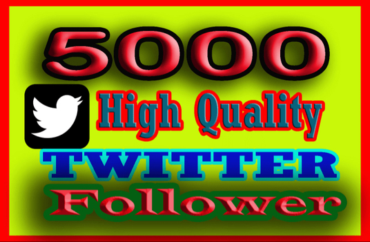 I will provide 200 solid Twitter followers