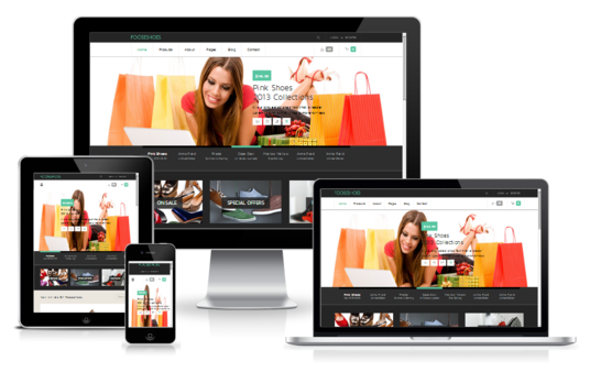 design Responsive and Professional Website