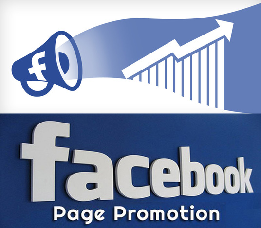 I will Do Facebook Page PROMOTION