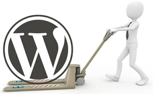 I will migrate or transfer your WordPress website to new hosting