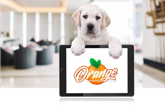 I will Promote Your Logo Website With My Dog