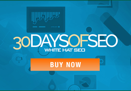 I will provide you with 30 days of SEO