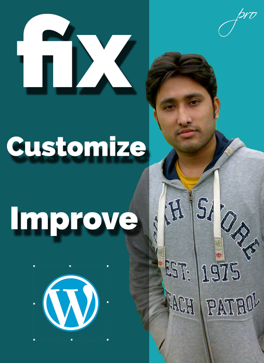 I will Customize, Fix  and Improve Wordpress
