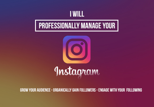 I will professionally manage your Instagram and engage with followers