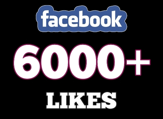 I will add 6000+ facebook likes in 24 hrs