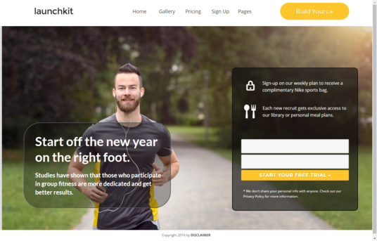 I will create WORDPRESS Landing Page, Squeeze Page or Product Page