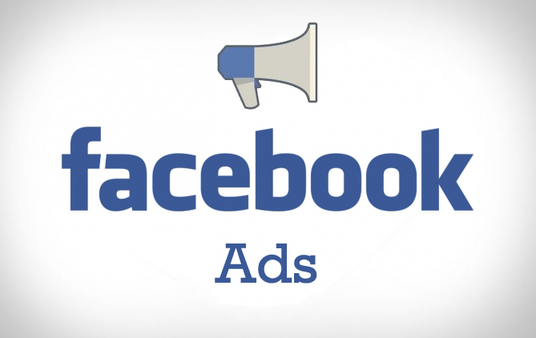 do Facebook advertising campaign for your site Or fan page