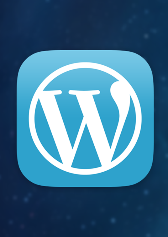 I will fix WordPress issues and customize themes